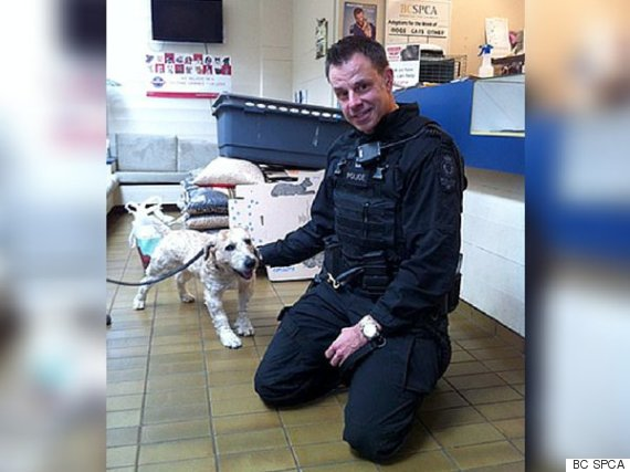 vancouver police spca