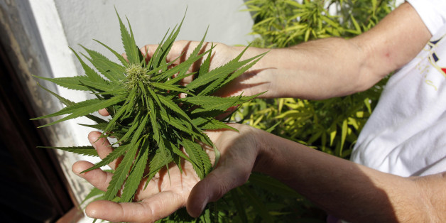 Ein Schwerkranker darf Cannabis für seine Behandlung anbauen (Symbolbild)
