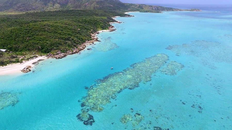lizard island coral bleaching great barrier reef