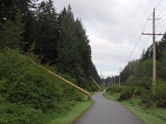 bc hydro surrey vandalism poles