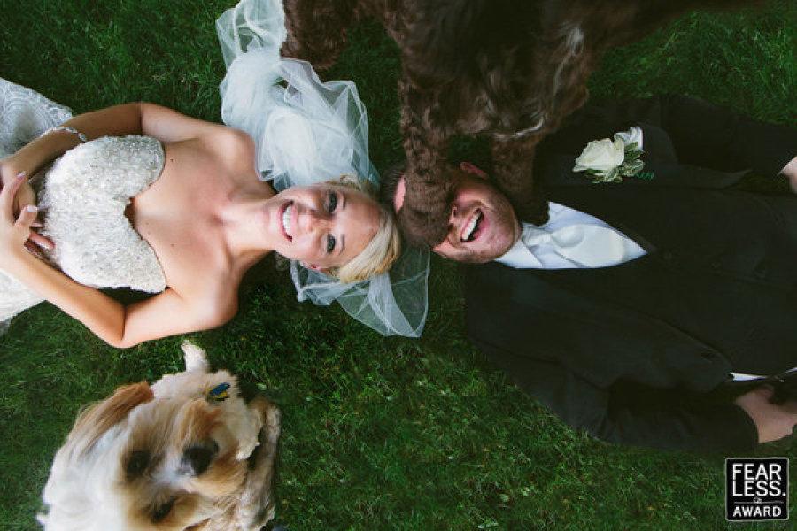boda novios perros
