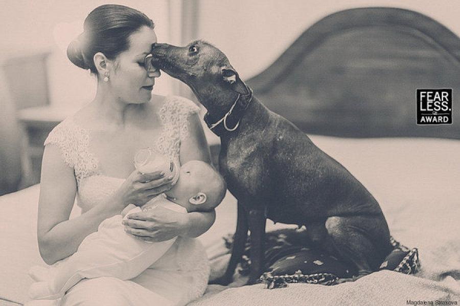 novia bebe perro