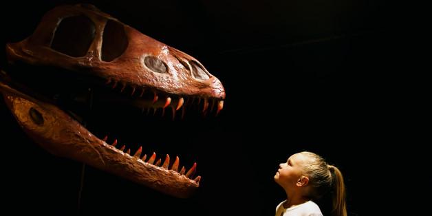 Dinosaurier faszinieren uns - jetzt haben Forscher womöglich neue Erkenntnisse, wie sie gestorben sind