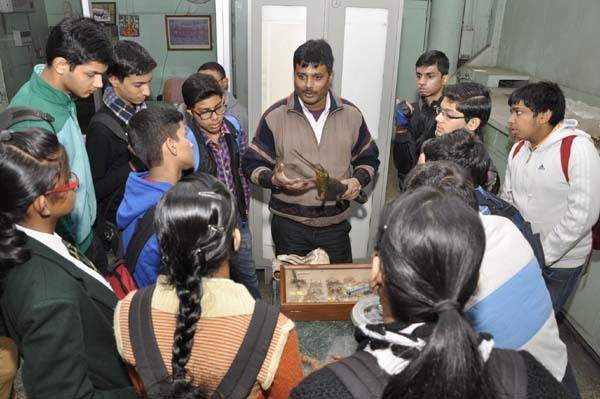 delhi museum