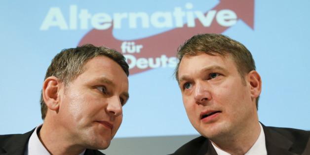 Die AfD-Politiker Björn Höcke (links) und André Poggenburg