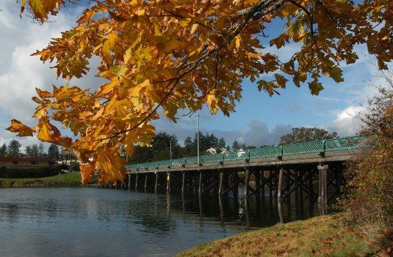 craigflower bridge