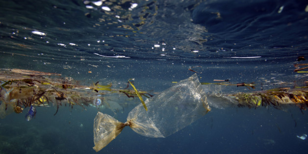 Plastic bag and other garbage floating underwater at Pulau Bunaken