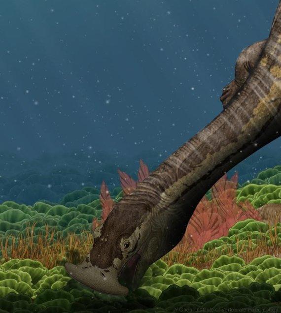 reptile marin