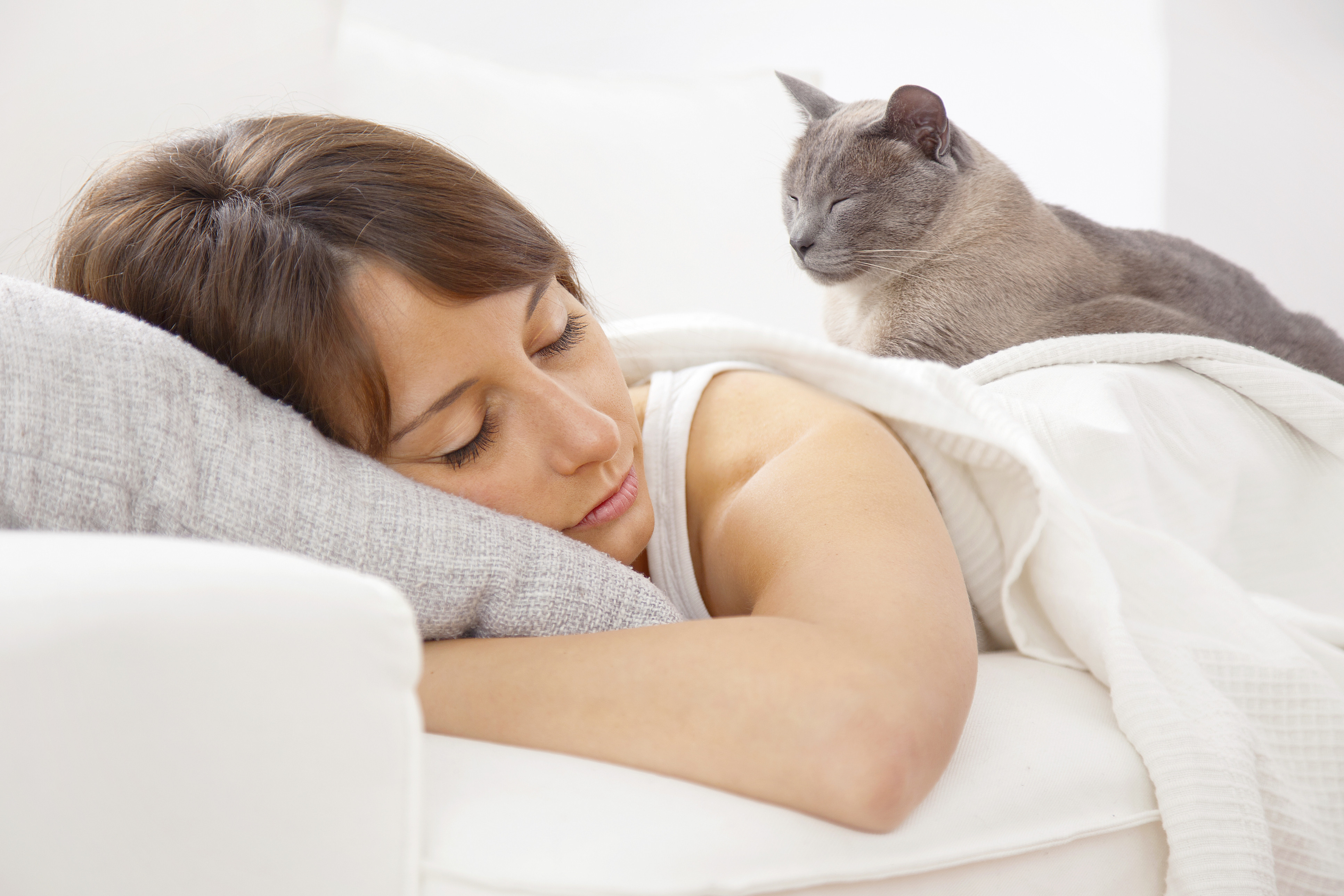 woman cats bed