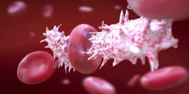 Superresistente Bakterien gefährden die Menschheit