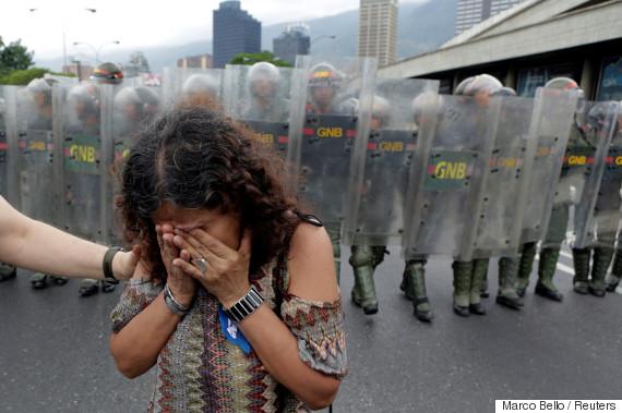 venezuela cat