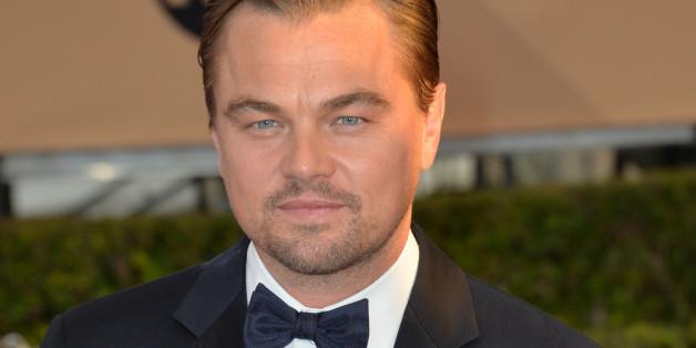 Leonardo DiCaprio reiste zur Verleihung eines Umweltpreises mit dem Privatjet an