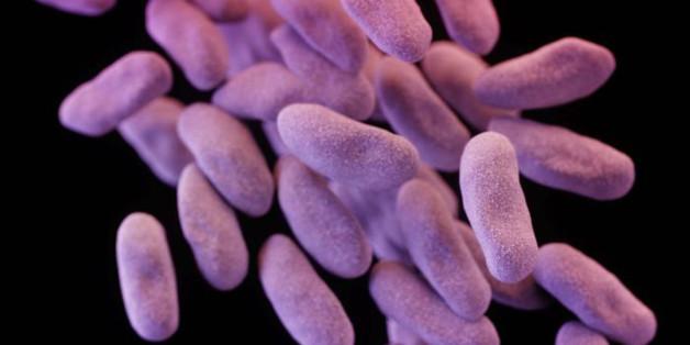 Cette nouvelle super-bactérie signe le début de la fin des antibiotiques