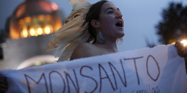 "A demonstrator holds a banner protesting against Monsanto Co during an event commemorating ""Dia Nacional del Maiz"" (National Corn Day) in Mexico City September 29, 2012. The Mexican non-governmental organisation ""Sin Maiz, No hay Pais"" (Without corn, there is no Country) commemorated National Corn Day for the third year in a row, as part of a national campaign to raise awareness of the problems of small farmers and to support banning the planting of genetically modified corn in order to protect"
