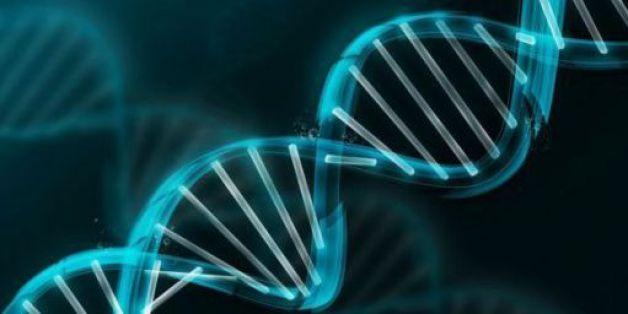 Bientôt un centre de recherche en génétique au Maroc