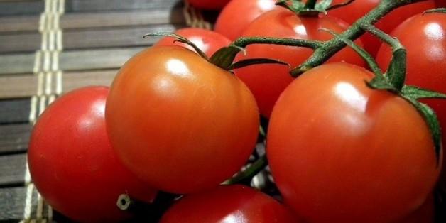 Les légumes marocains ont la cote en Espagne (et dans les autres pays de l'UE)