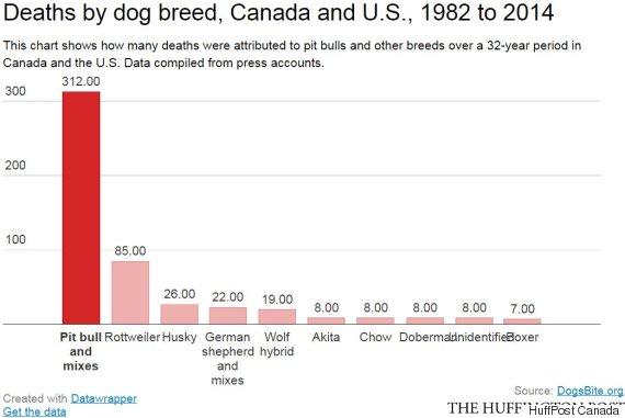 dog breed death