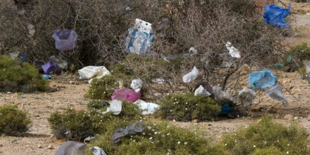 Un collectif d'associations lance une opération de ramassage des sacs en plastique