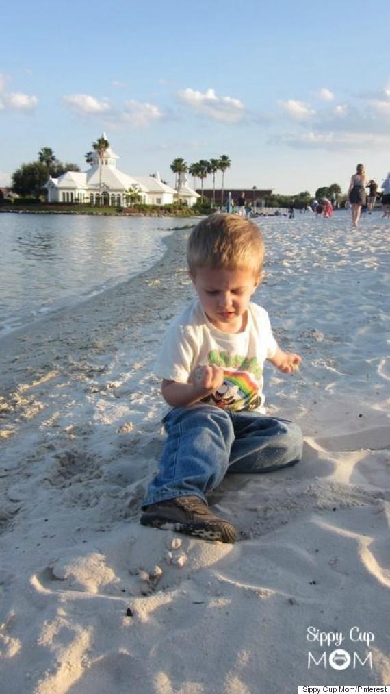 hayden beach alligator