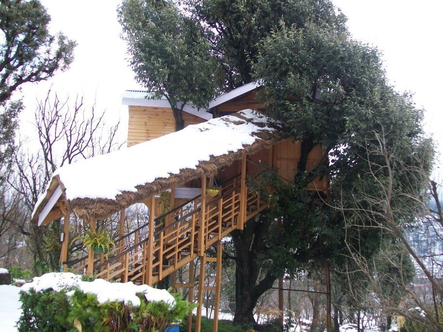 manali tree house