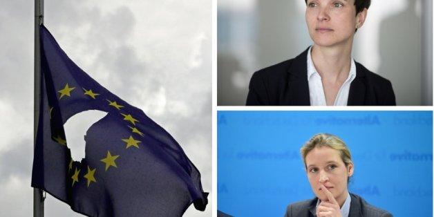 Gefährlicher Drei-Schritte-Plan: So will die AfD die EU verändern
