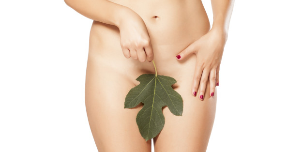 Female covers pubic area by fig leaf