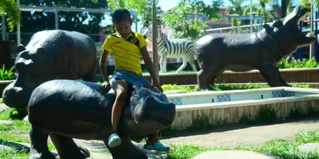 Des répliques d'hippopotames ornent même l'entrée d'un restaurant et l'aire de jeux du square à Doradal, en Colombie, où le baron de la drogue Pablo Escobar avait bâti sa luxueuse hacienda et ouvert un zoo privé