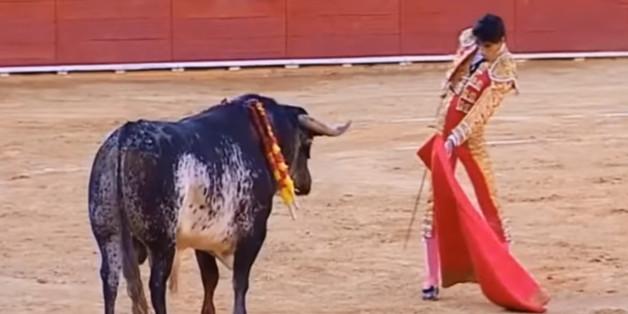 Un torero meurt après un coup de corne en pleine corrida en Espagne