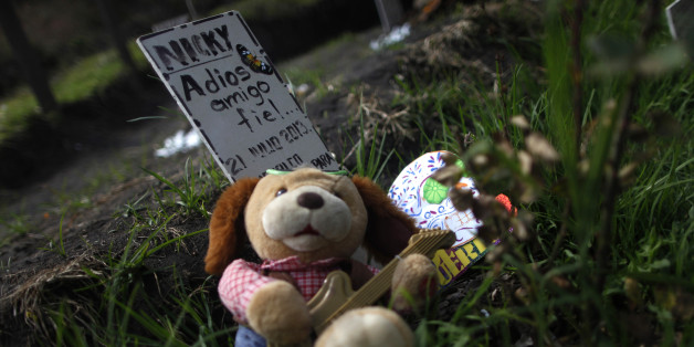 "A stuffed toy is seen next to a headstone that reads ""Nicky, Bye loyal friend"" on the Day of the Dead at pet cemetery ""Amayalco, Garden for a friend"" in the outskirts of Mexico City November 1, 2013. According to pet funeral service companies, Mexicans are increasingly choosing to cremate or bury their domestic pets who have died and buy them coffins. In Mexico, funeral services for pets cost between $80 and $250. REUTERS/Edgard Garrido (MEXICO - Tags: ANIMALS SOCIETY)"