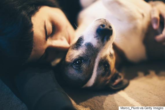 woman hugging dog sad