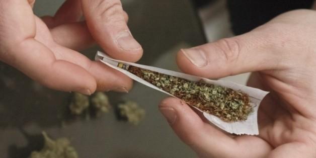 Quels scénarios si le Maroc légalisait le cannabis?