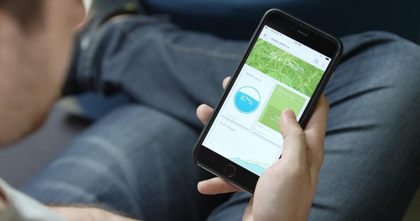 grobo marijuana app