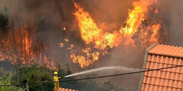 Un pompier lutte contre le feu sur l'île de Madère, le 9 août 2016
