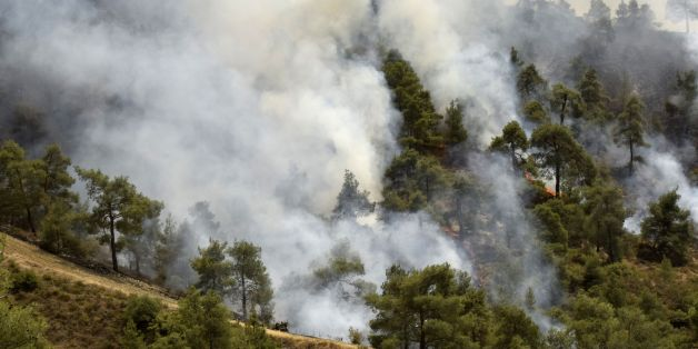 Smoke billows from a forest in the Cypriot village of Evrychou in the Troodos mountain area on June 20, 2016.