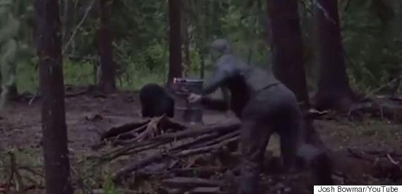 josh bowmar spears bear