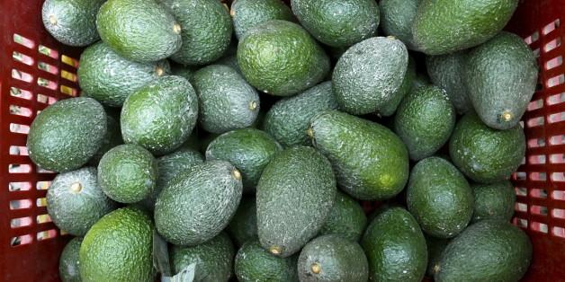 Warum die Umwelt unter dem weltweiten Avocado-Boom leidet