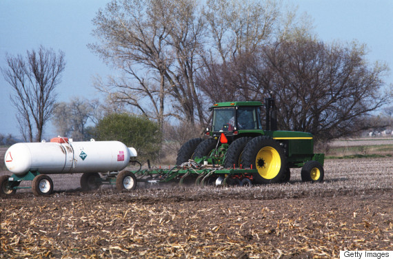 fertilizer soil