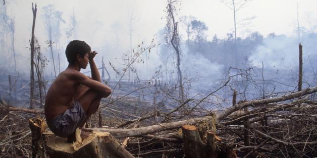 Forscher führen das Zeitalter Anthropozän ein