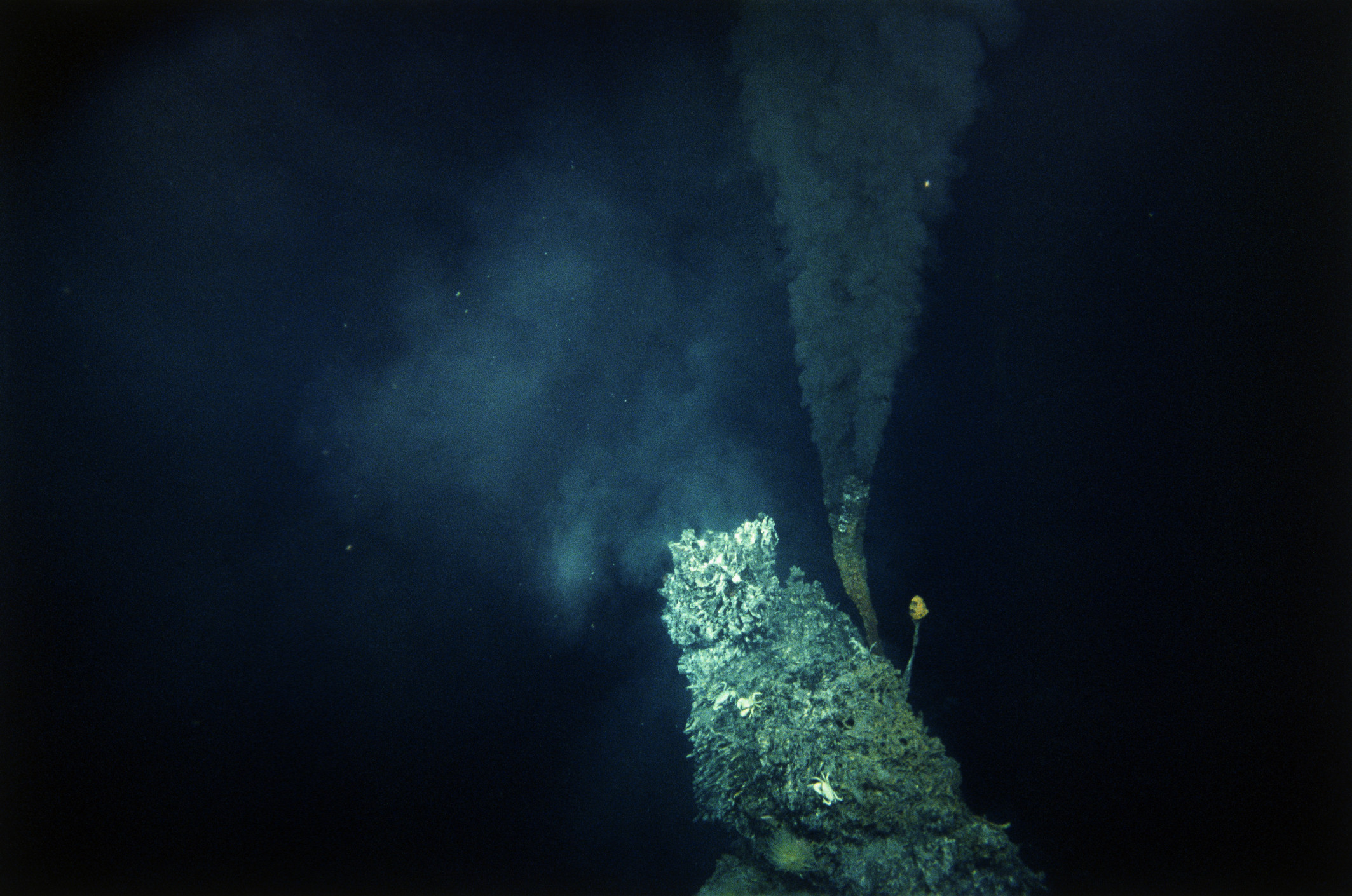 hydrothermal vent ocean