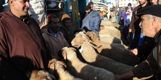 TO GO WITH AFP STORY BY Herve GUILBAUD Sheep vendors talk to potential buyers on December 5, 2008 in Rabat ahead of Muslim religious holiday Aid el-Kebir.  AFP PHOTO / ABDELHAK SENNA (Photo credit should read ABDELHAK SENNA/AFP/Getty Images)