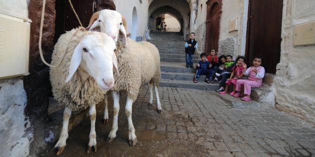 Des enfants avec les moutons à la veille de l'Aïd Al Adha à Alger, novembre 2011 (archives)