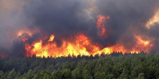 Trente individus devant la justice pour les incendies de forêts qui ont touché le nord du Maroc