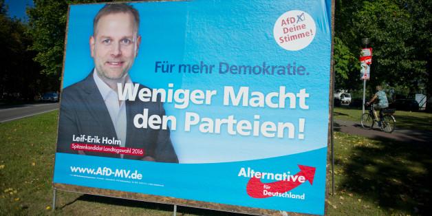 Der AfD-Spitzenkandidat Leif-Erik Holm