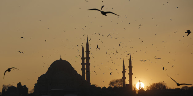 The sun sets over the Ottoman-era Suleymaniye mosque in Istanbul January 8, 2014. REUTERS/Murad Sezer (TURKEY - Tags: ENVIRONMENT RELIGION)