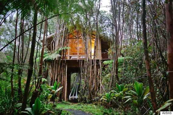 hawaii treehouse