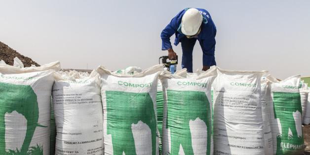 Un prêt de 24 millions d'euros de la Berd pour Éléphant Vert