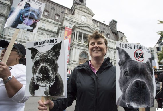 montreal pit bull ban protest