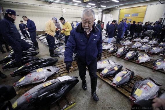 comprador de peixes