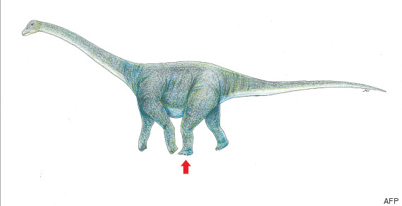 titanosaure