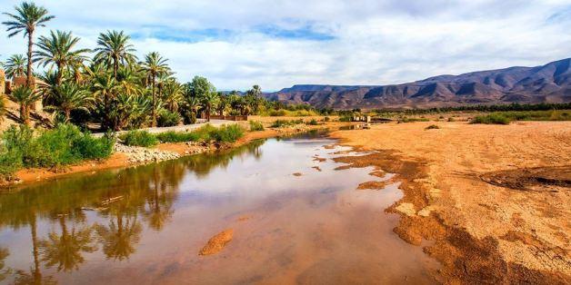 A Tafilelt, la plus grande oasis au monde menacée par le changement climatique